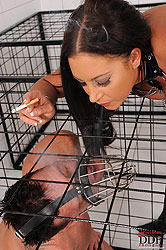 Emma Butt tames her pet in his cage