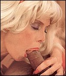Blonde eighties lady enjoys cock in her hairy pussyhole