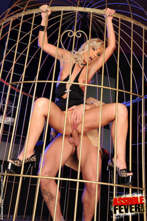 Blonde fuckpet bird fucked a dick in a golden cage