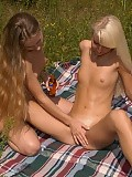 Alluring picnickers undress kiss and dildo shaved pussies