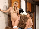 Lusty cowgirls undress finger and tongue shaved pussies