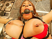Sheila Marie - Milf gets dildo drilled in the ass!