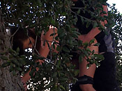 Roadside Assistance - Chick in distress fucked in the bushes