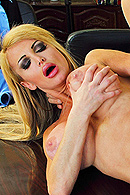 Taylor Wane Pictures in Merging My Big Tits